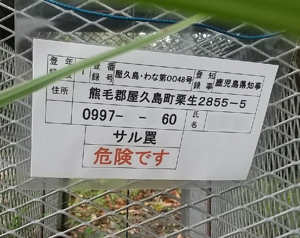 f:id:y-6kakudo:20200514101923j:plain