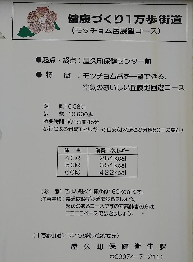 f:id:y-6kakudo:20200521004536j:plain