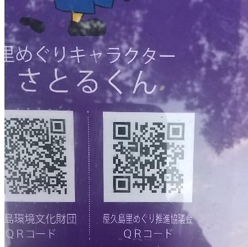 f:id:y-6kakudo:20200608022332j:plain