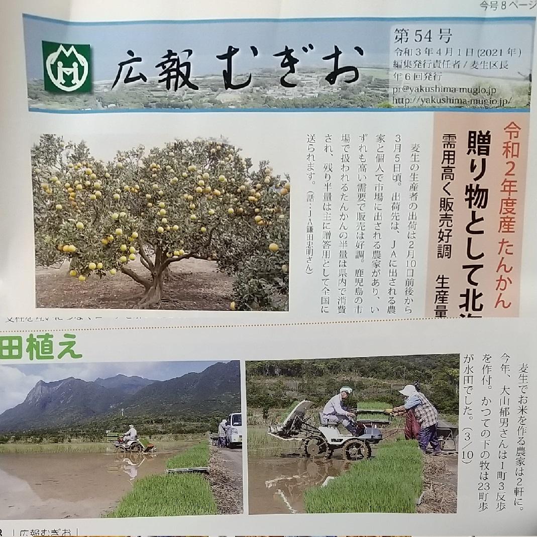 f:id:y-6kakudo:20210417215214j:plain