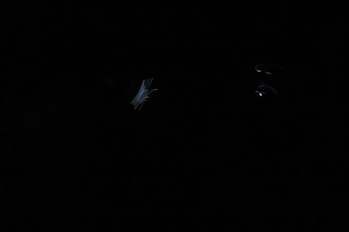 f:id:y-6kakudo:20210427212727j:plain