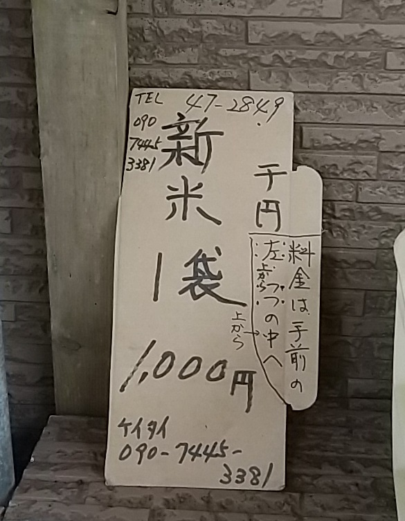 f:id:y-6kakudo:20210801132514j:plain