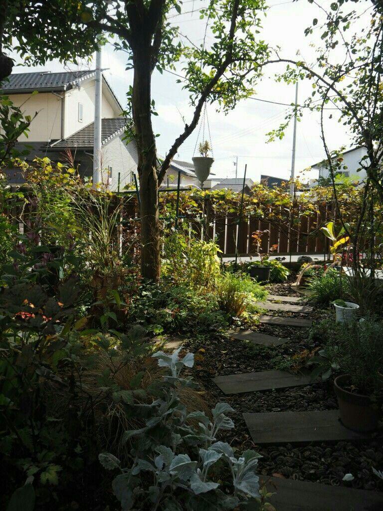 f:id:y-garden:20181028142134j:image