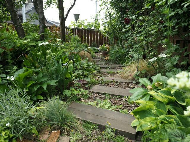 f:id:y-garden:20190513084406j:image