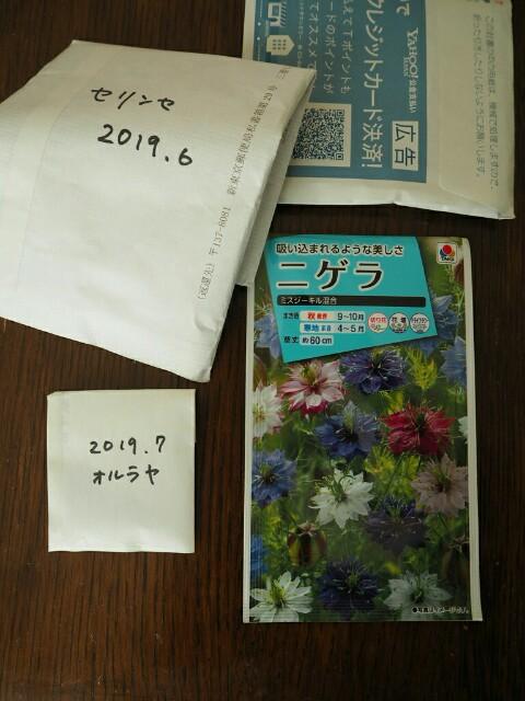 f:id:y-garden:20191028154245j:image