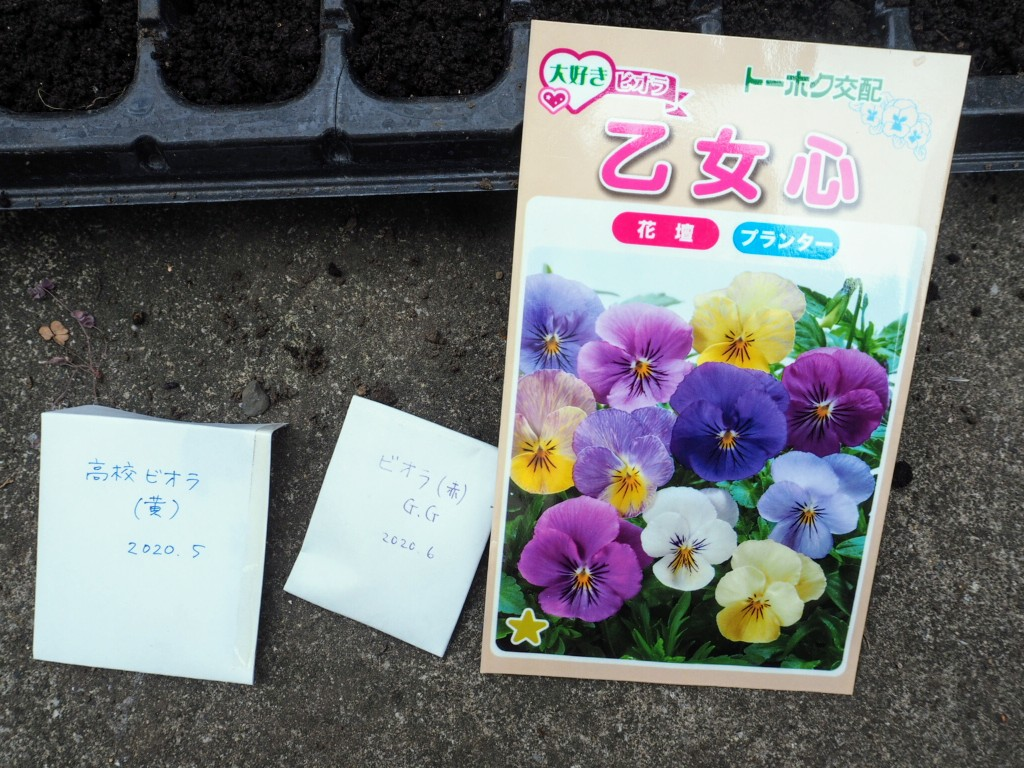 f:id:y-garden:20200929195452j:plain