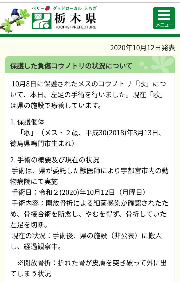 f:id:y-garden:20201013162235p:plain