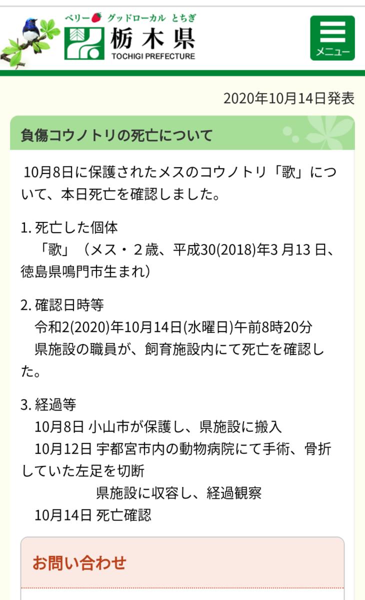 f:id:y-garden:20201015210626p:plain