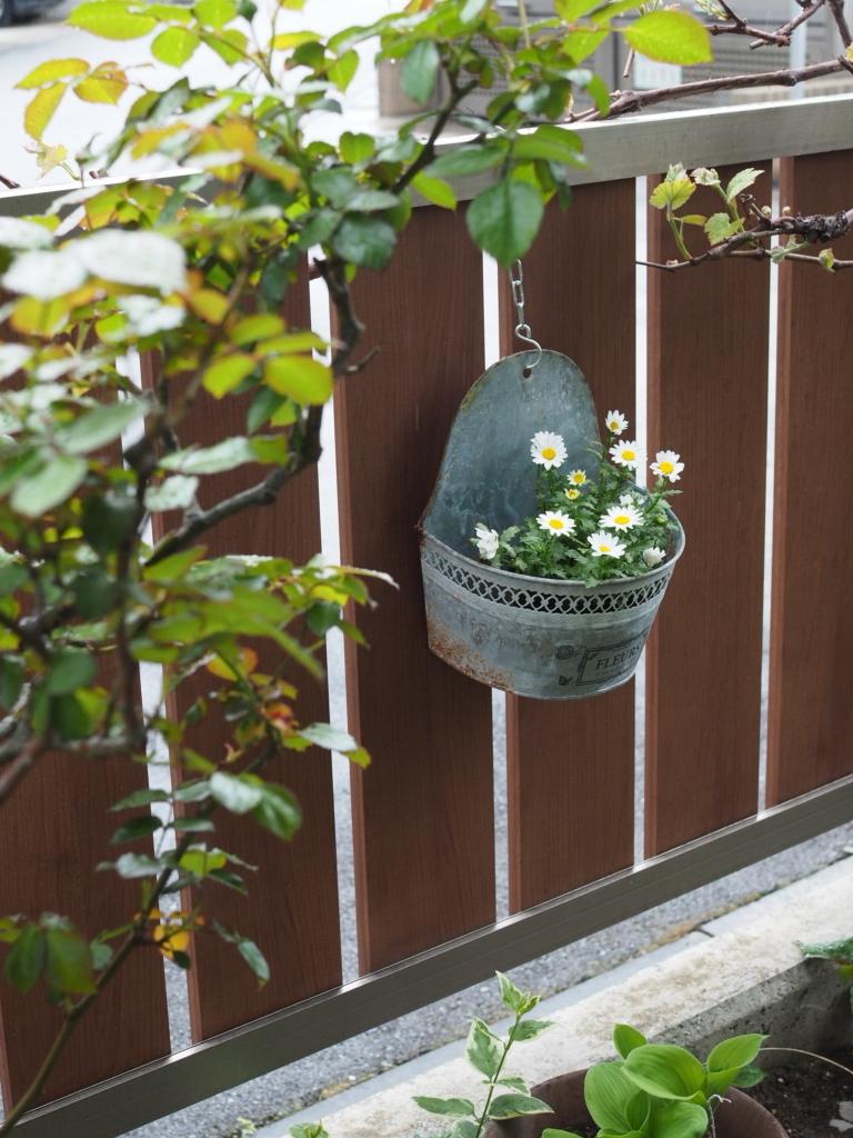 f:id:y-garden:20210418071902j:plain