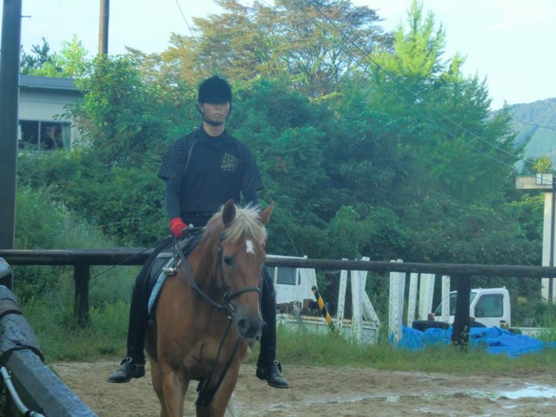 f:id:y-horse:20131006064336j:image