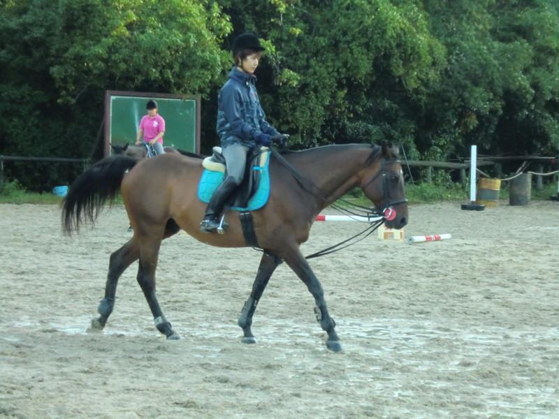 f:id:y-horse:20131006070532j:image