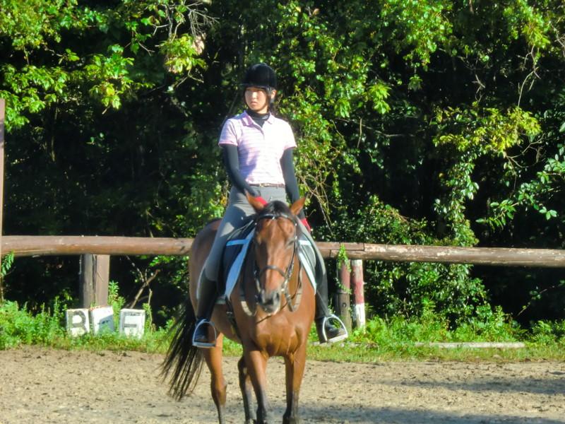 f:id:y-horse:20131006074937j:image