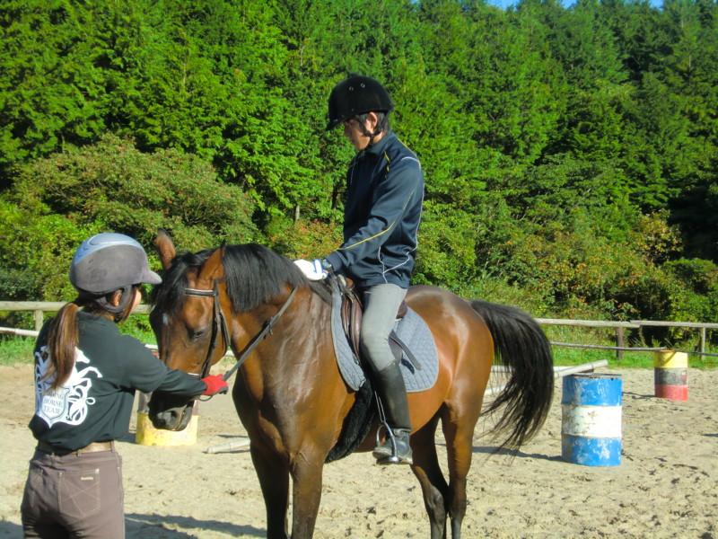f:id:y-horse:20131006081015j:image