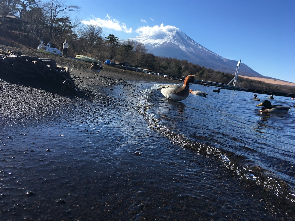 f:id:y-ishikawa1011:20171231103333j:image