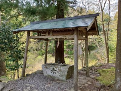 f:id:y-kamaji:20210408185126j:plain