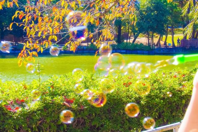 庭先に舞うシャボン玉の写真