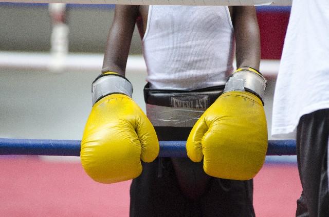 ボクシンググローブをはめた男の子の写真