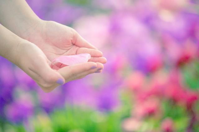 手のひらに花びらが一枚乗っている写真