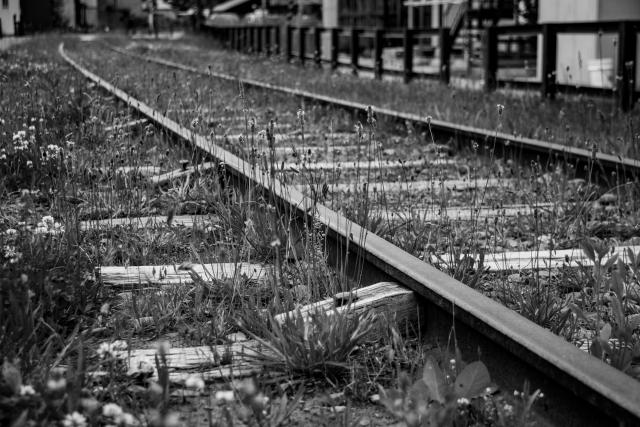 朽ち果てた線路の写真