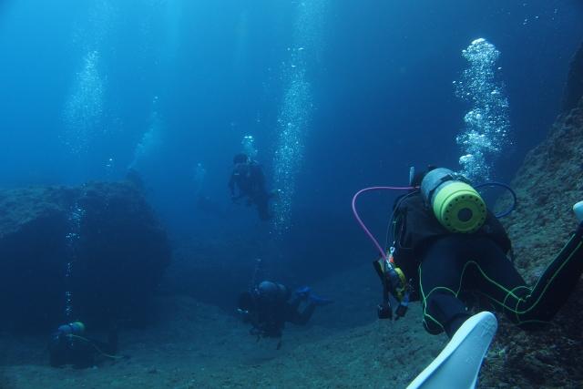 ダイビングをしている水中写真