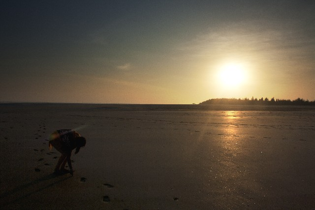 浜辺と夕日の写真