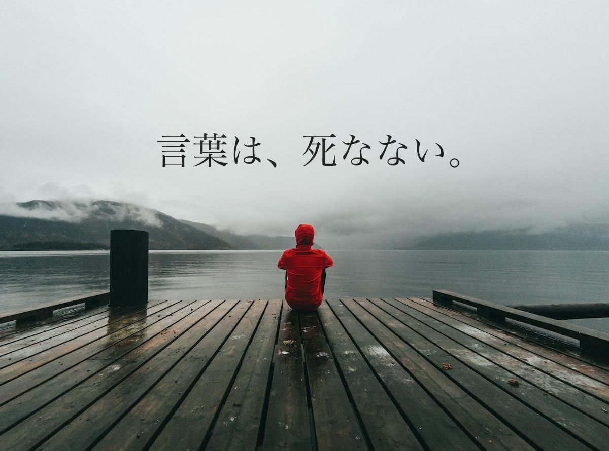 湖畔にたたずむ男性の写真