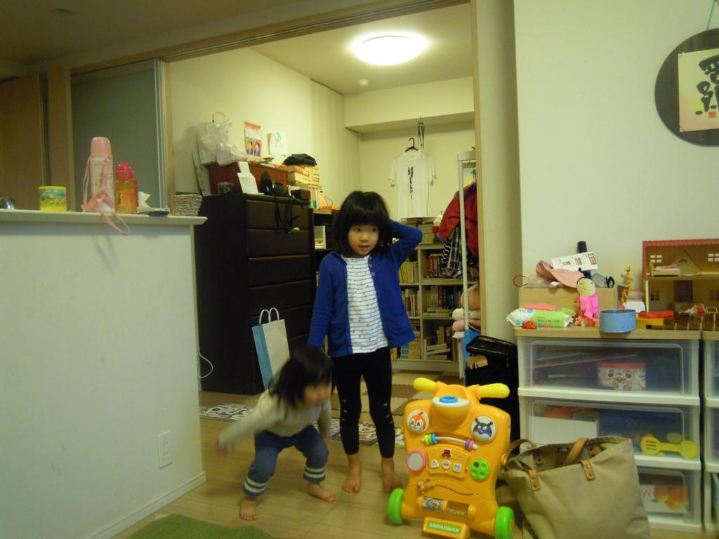 f:id:y-sakamoto0316:20161201101229j:plain