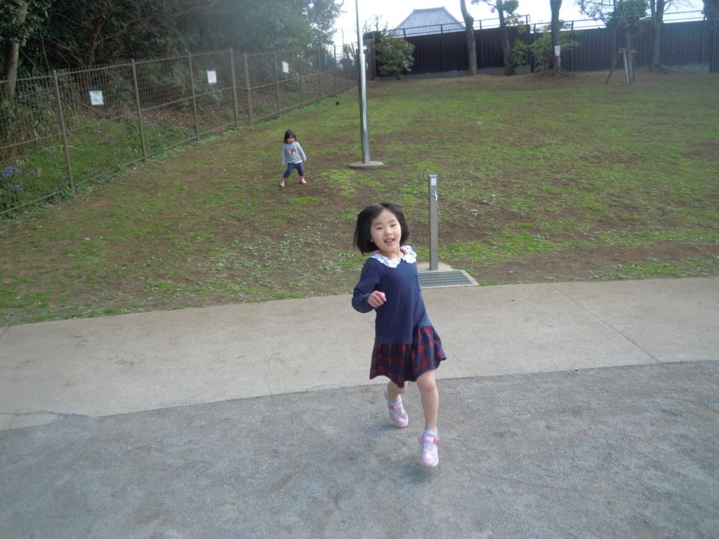 f:id:y-sakamoto0316:20170320003410j:plain
