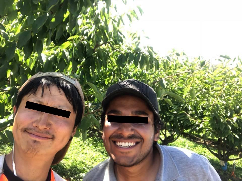 f:id:y-shiba1114:20180312230706j:plain