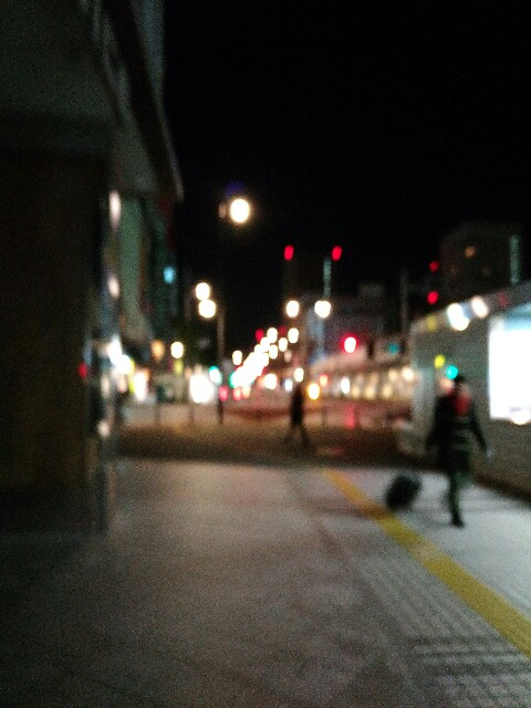 f:id:y-shogo03:20170207053706j:image