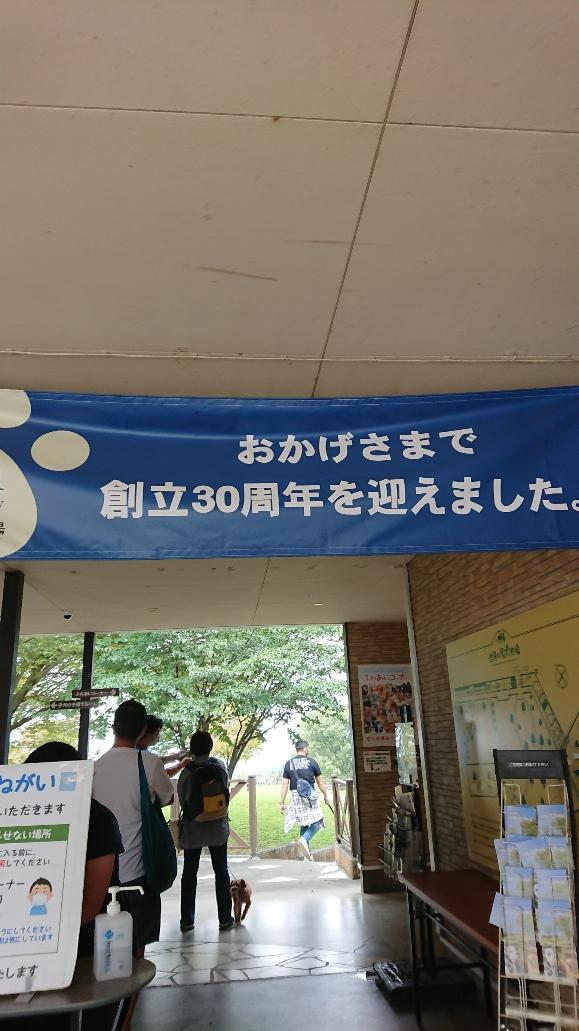 f:id:y-taroharu:20200922173039j:plain