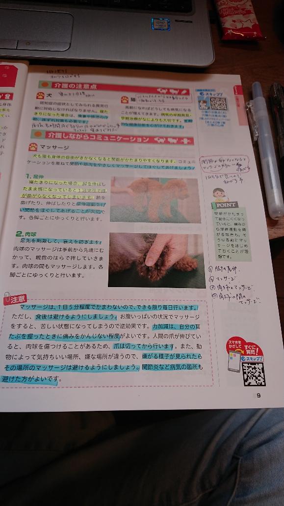 f:id:y-taroharu:20201011160645j:plain