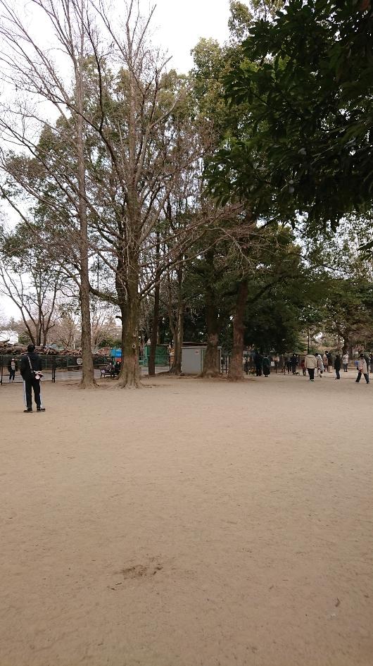 f:id:y-taroharu:20210123162211j:plain