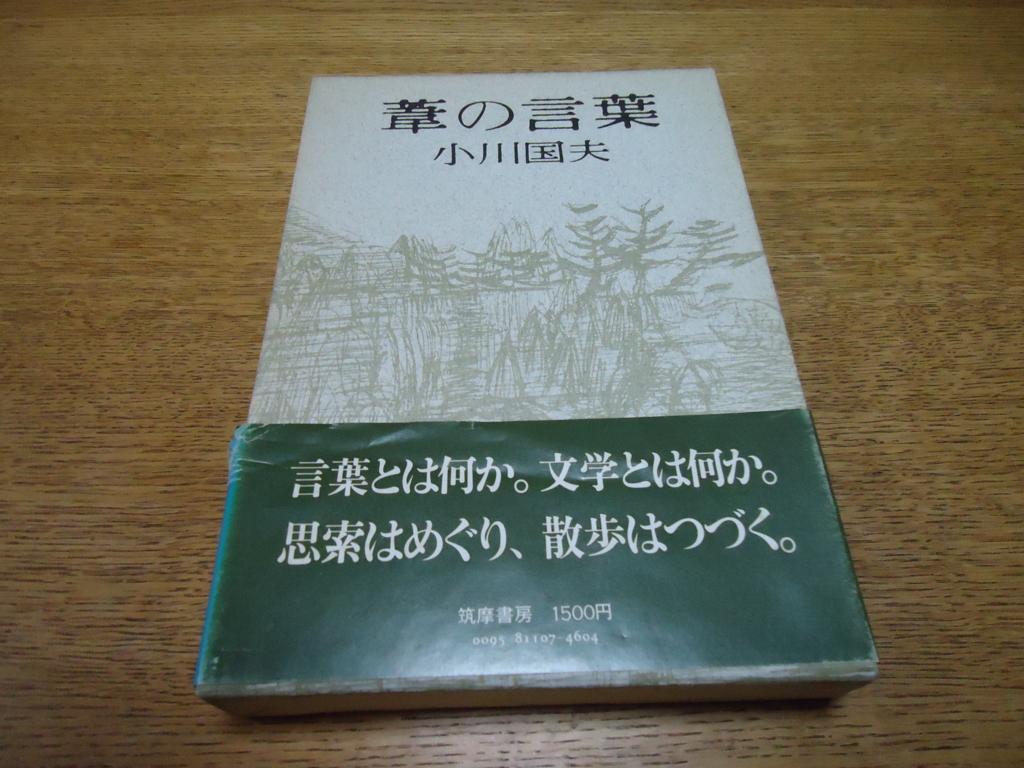 f:id:ySatoshi:20170130164851j:plain