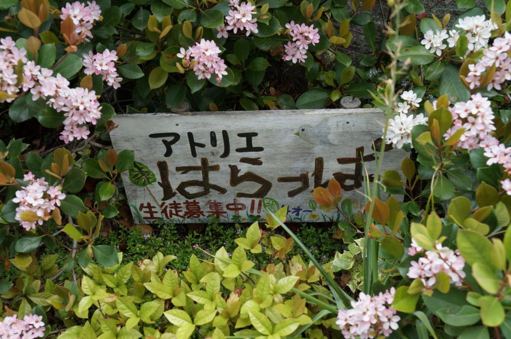 f:id:yShimizu:20170529015841j:plain