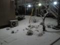 [船橋][雪]夕方から降ってきた雪が激しく積もる その1
