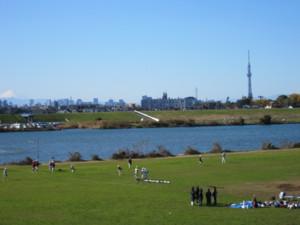 江戸川の河川敷。