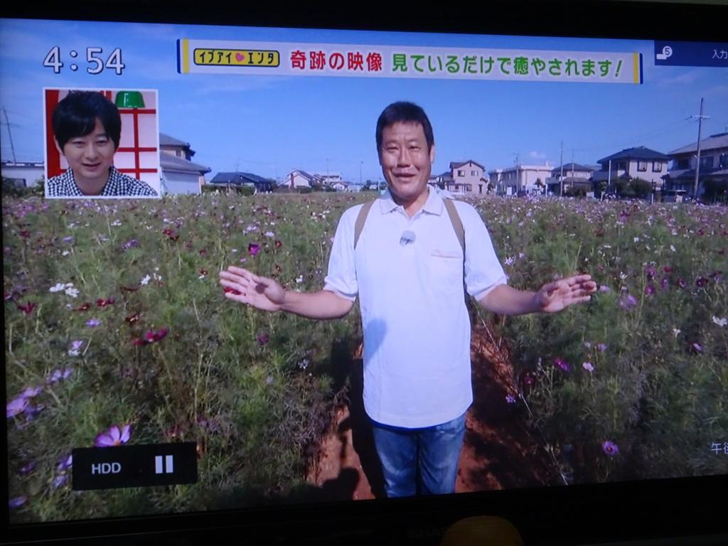 f:id:y_hamada:20160914210924j:plain