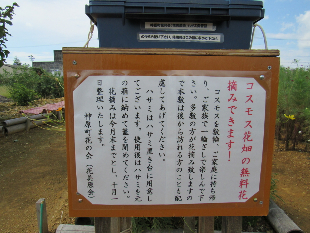 f:id:y_hamada:20170909101449j:plain