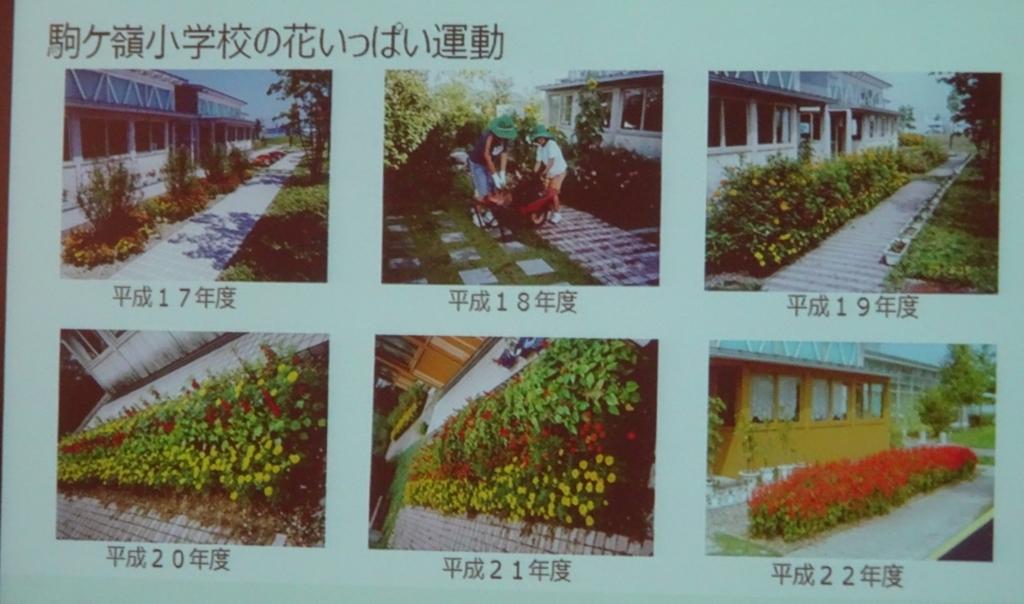 f:id:y_hamada:20171025135001j:plain
