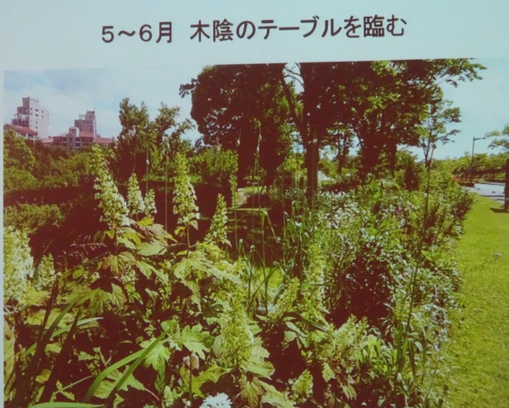 f:id:y_hamada:20171025141637j:plain