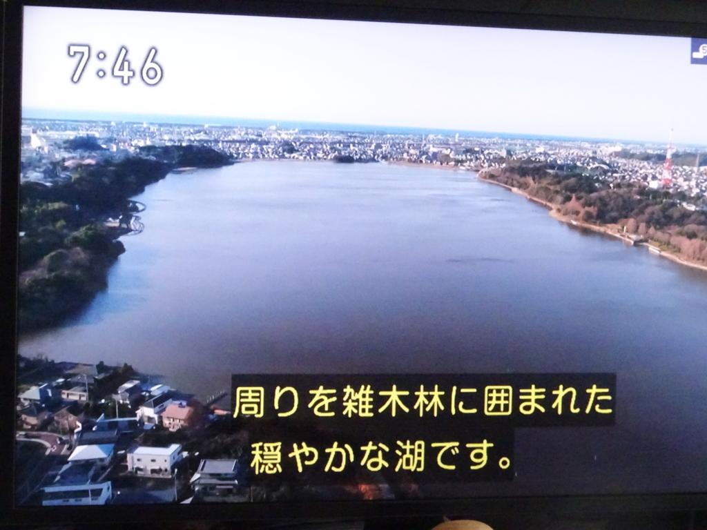 f:id:y_hamada:20180225082446j:plain