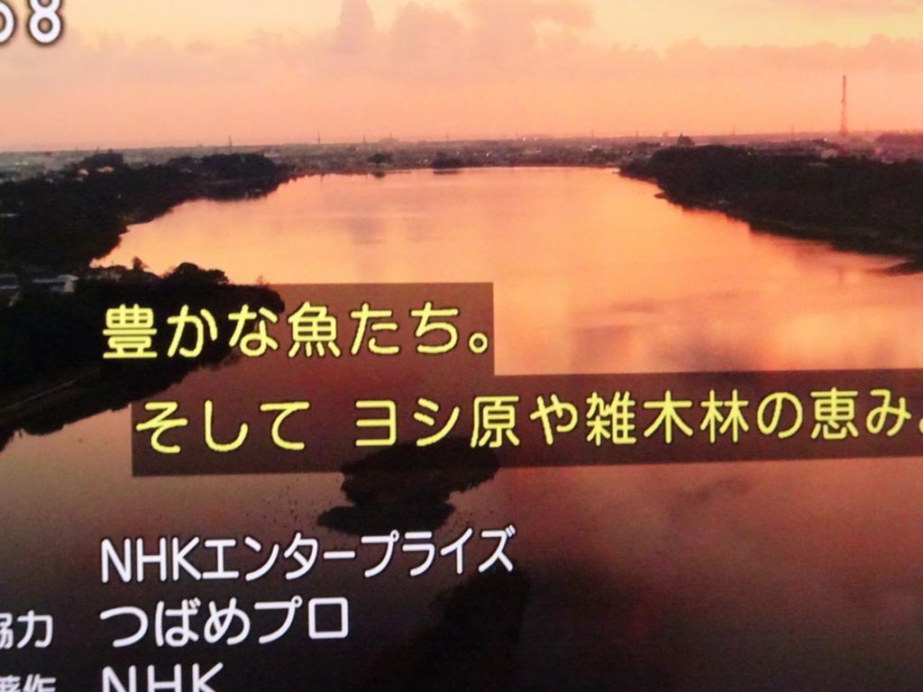 f:id:y_hamada:20180225083650j:plain