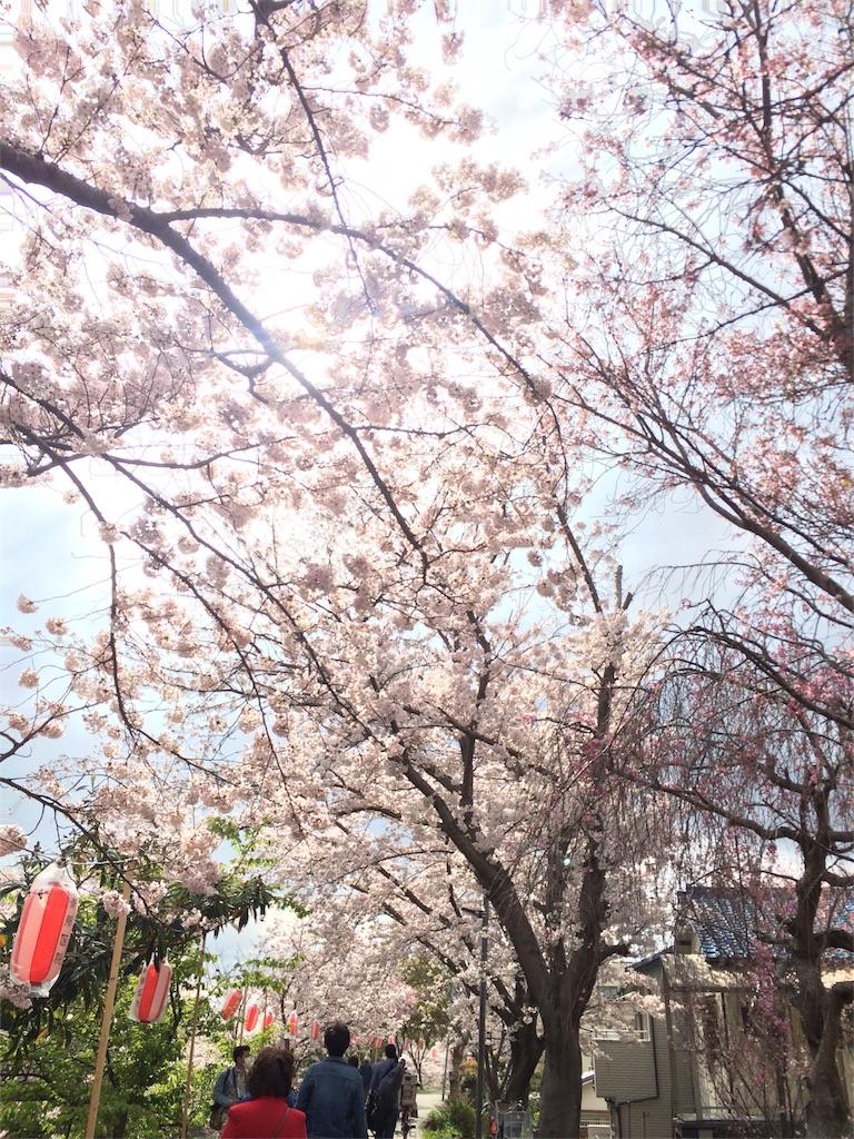 f:id:y_kaneko1992:20170416173535j:image