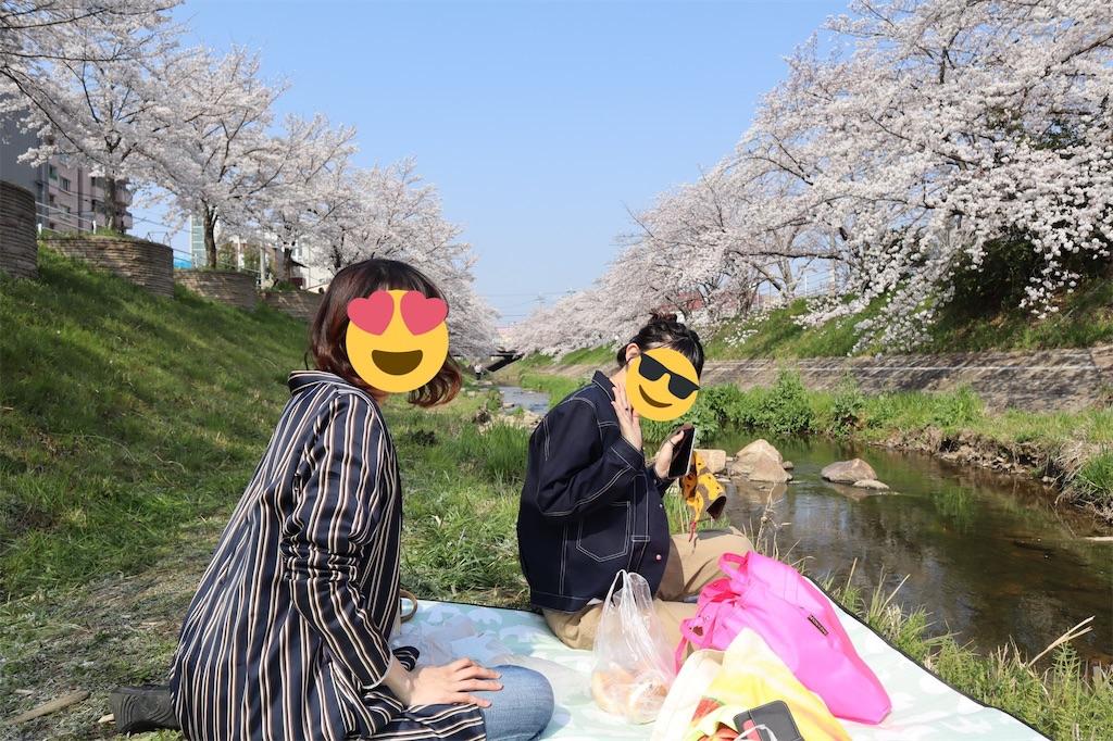 f:id:y_kaneko1992:20190408224603j:image