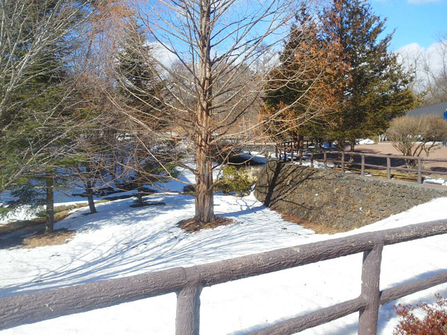 風越公園の雪景色