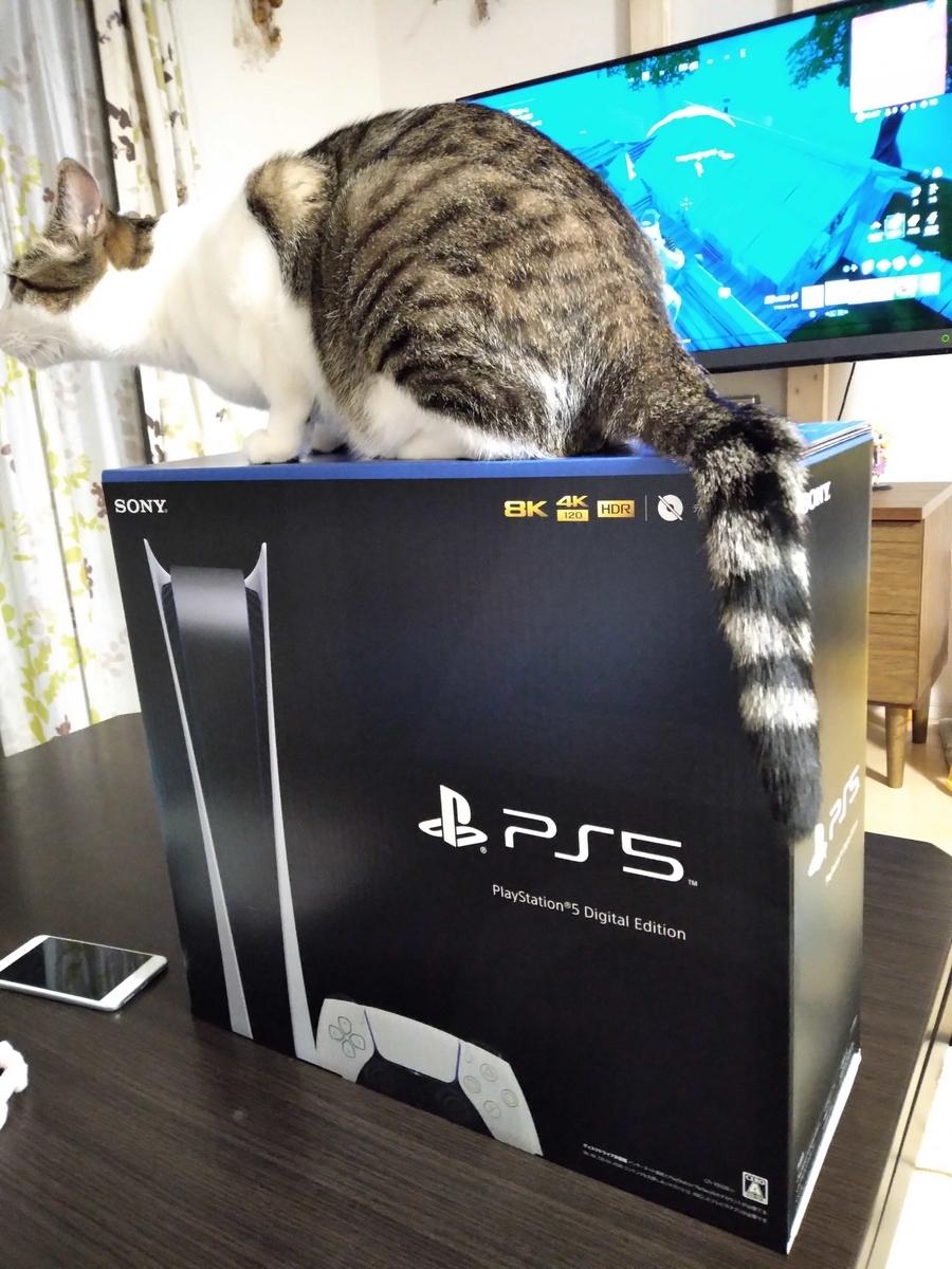 PS5の箱と猫