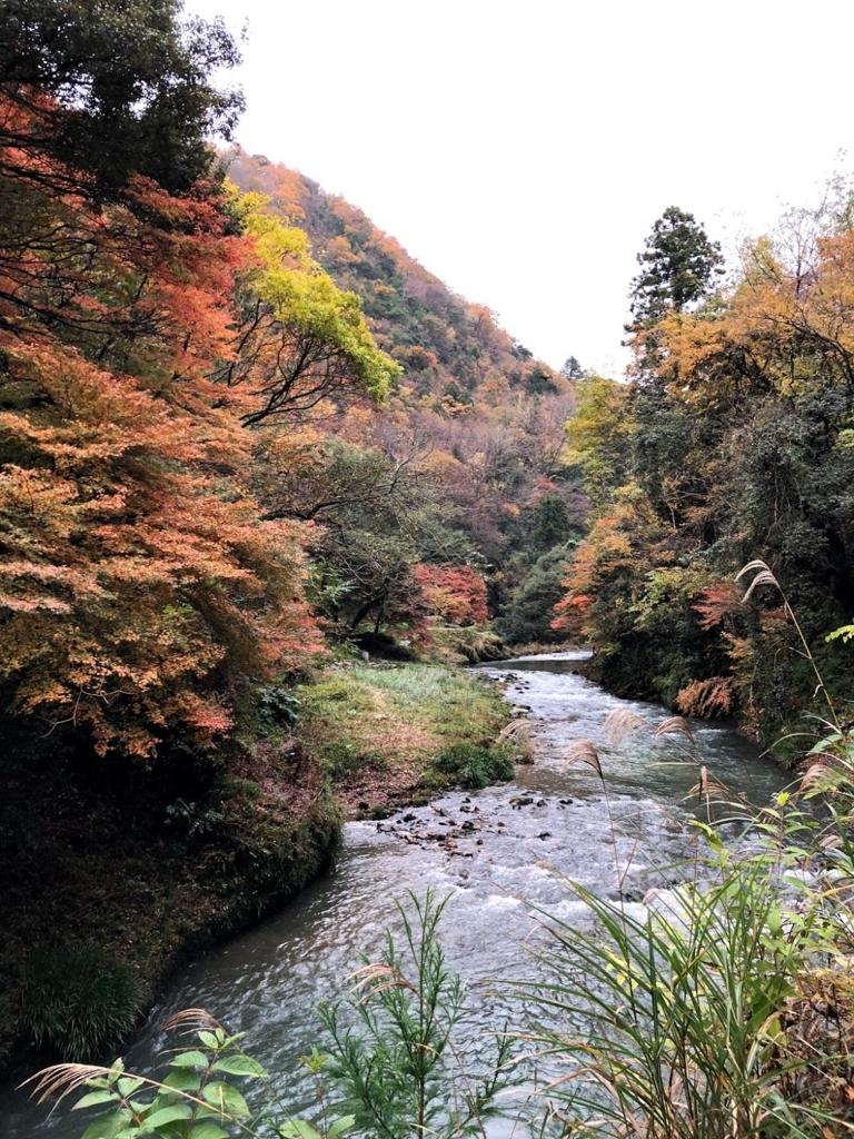 f:id:y_shimabukuro:20171116221045j:plain