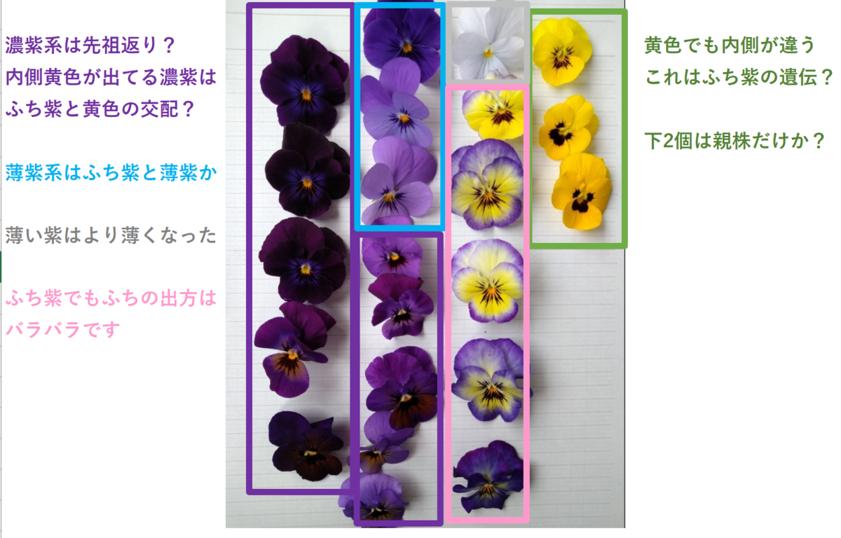 f:id:ya-kabu:20210504222319p:plain