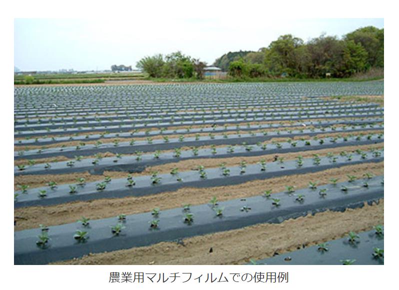 f:id:ya-kabu:20210505215502p:plain
